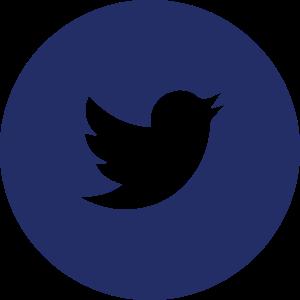 BTC_WEBSITE-social media icons (blue)-16